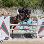 FEI Jumping World Challenge Competition 3 Bermuda, March 9 2019-0035