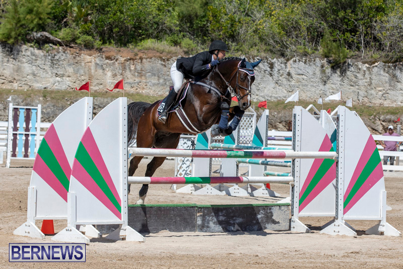FEI-Jumping-World-Challenge-Competition-3-Bermuda-March-9-2019-0035