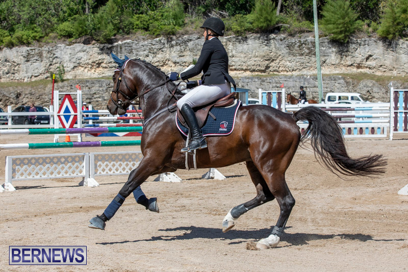 FEI-Jumping-World-Challenge-Competition-3-Bermuda-March-9-2019-0043
