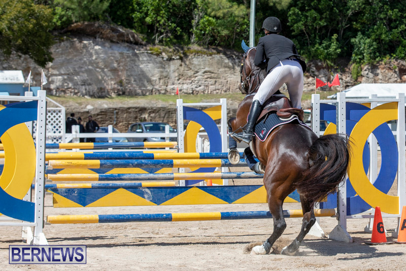 FEI-Jumping-World-Challenge-Competition-3-Bermuda-March-9-2019-0044