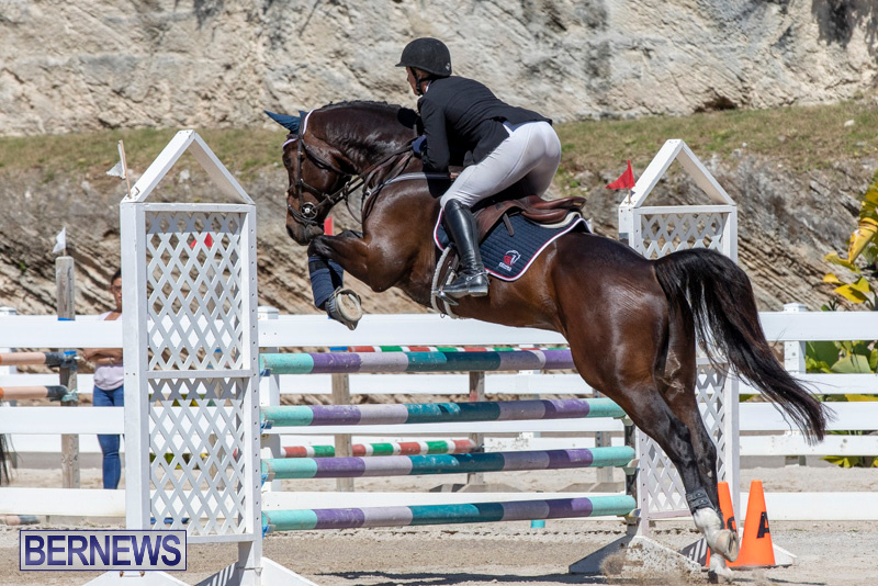 FEI-Jumping-World-Challenge-Competition-3-Bermuda-March-9-2019-0054