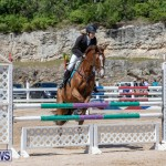 FEI Jumping World Challenge Competition 3 Bermuda, March 9 2019-0065