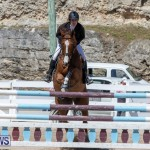 FEI Jumping World Challenge Competition 3 Bermuda, March 9 2019-0073