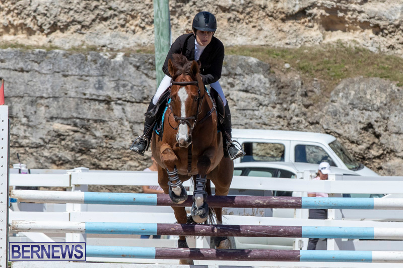 FEI-Jumping-World-Challenge-Competition-3-Bermuda-March-9-2019-0074