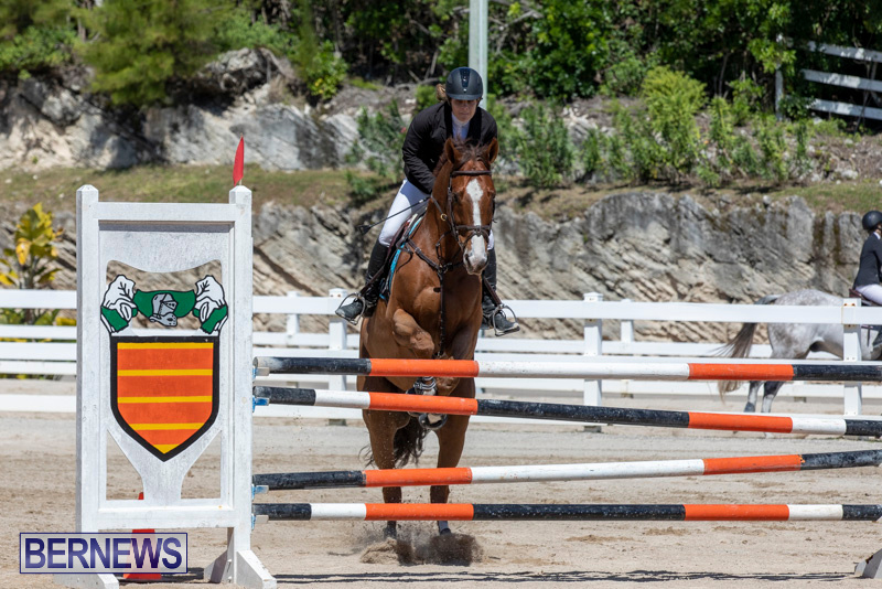 FEI-Jumping-World-Challenge-Competition-3-Bermuda-March-9-2019-0080