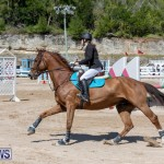 FEI Jumping World Challenge Competition 3 Bermuda, March 9 2019-0085