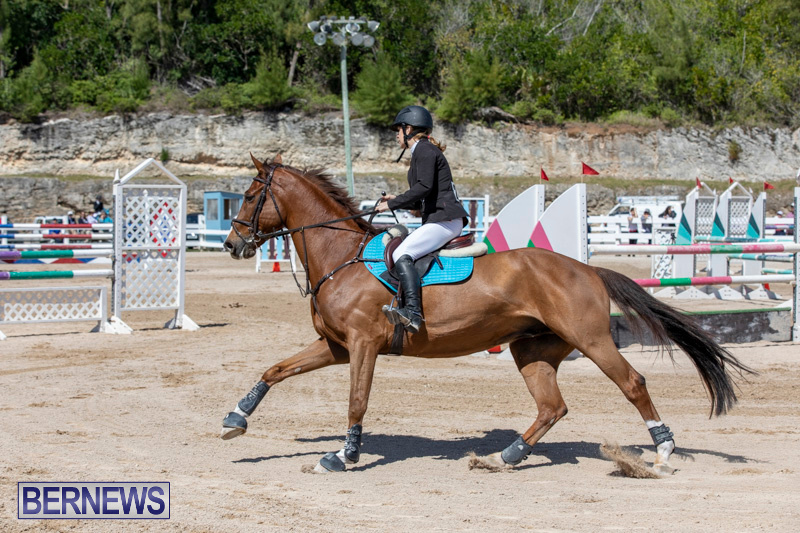 FEI-Jumping-World-Challenge-Competition-3-Bermuda-March-9-2019-0085