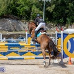 FEI Jumping World Challenge Competition 3 Bermuda, March 9 2019-0086