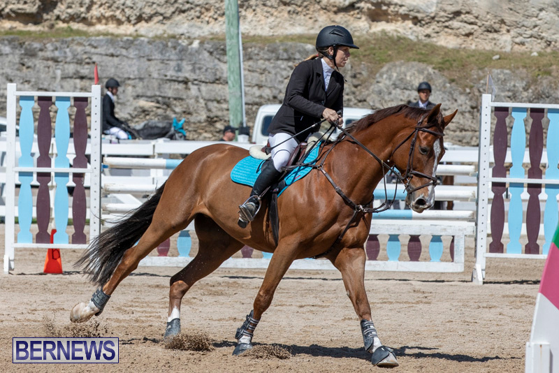 FEI-Jumping-World-Challenge-Competition-3-Bermuda-March-9-2019-0095