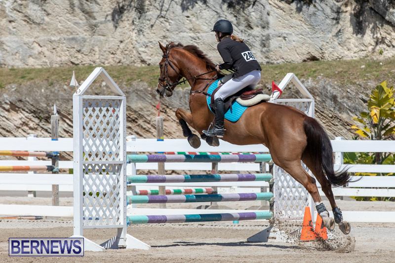 FEI-Jumping-World-Challenge-Competition-3-Bermuda-March-9-2019-0096