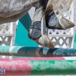 FEI Jumping World Challenge Competition 3 Bermuda, March 9 2019-0119