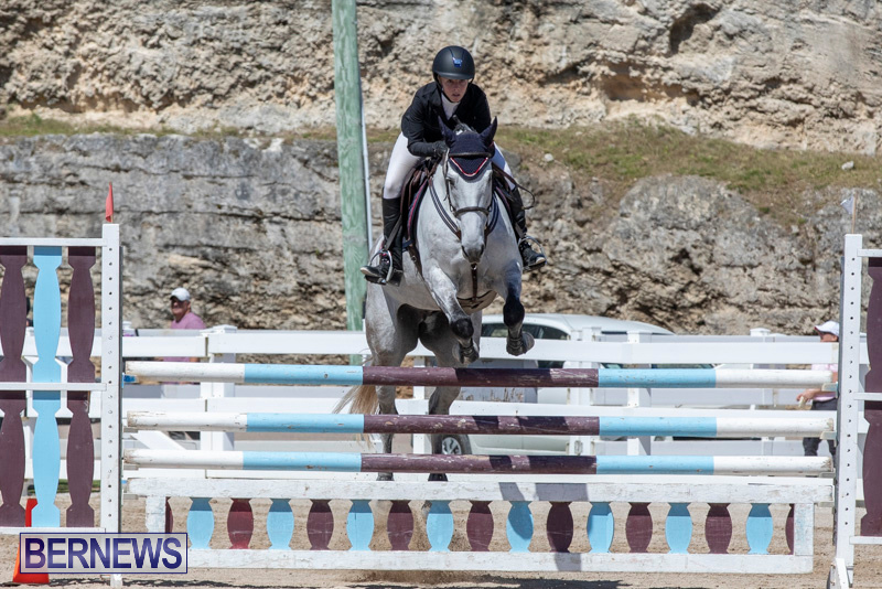FEI-Jumping-World-Challenge-Competition-3-Bermuda-March-9-2019-0120