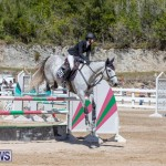 FEI Jumping World Challenge Competition 3 Bermuda, March 9 2019-0127