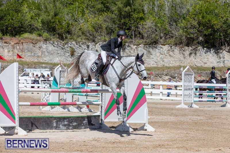 FEI-Jumping-World-Challenge-Competition-3-Bermuda-March-9-2019-0127