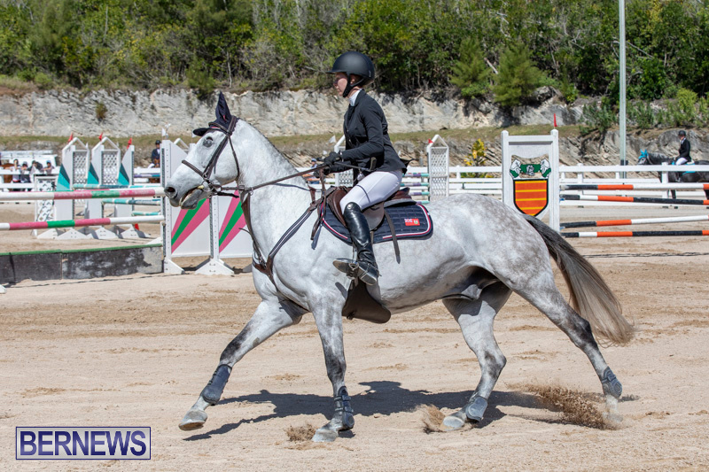 FEI-Jumping-World-Challenge-Competition-3-Bermuda-March-9-2019-0142