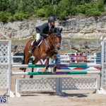 FEI Jumping World Challenge Competition 3 Bermuda, March 9 2019-0157