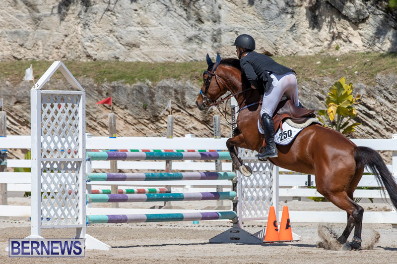 FEI-Jumping-World-Challenge-Competition-3-Bermuda-March-9-2019-0183