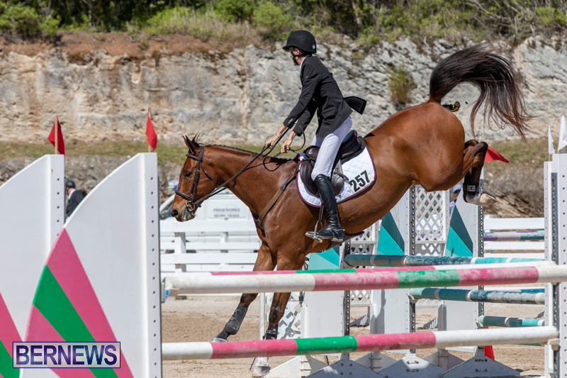FEI-Jumping-World-Challenge-Competition-3-Bermuda-March-9-2019-0194