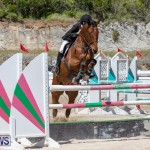 FEI Jumping World Challenge Competition 3 Bermuda, March 9 2019-0200