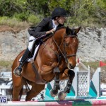 FEI Jumping World Challenge Competition 3 Bermuda, March 9 2019-0201