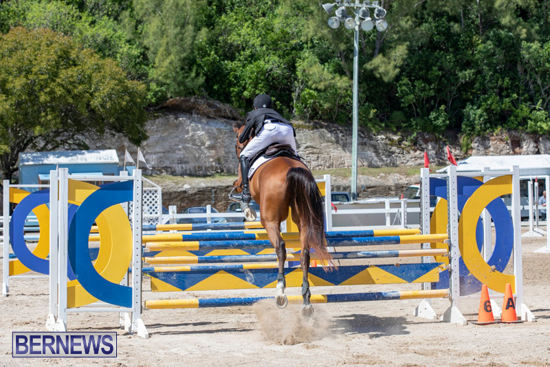 FEI-Jumping-World-Challenge-Competition-3-Bermuda-March-9-2019-0210