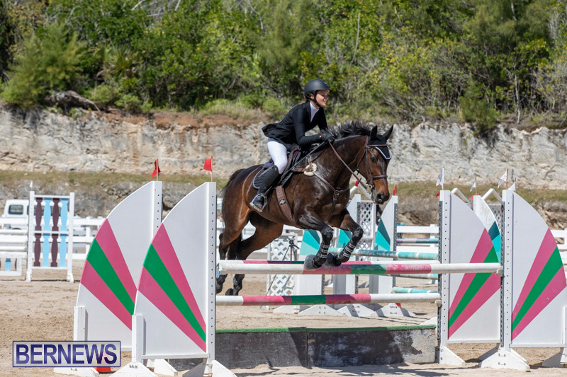FEI-Jumping-World-Challenge-Competition-3-Bermuda-March-9-2019-0227