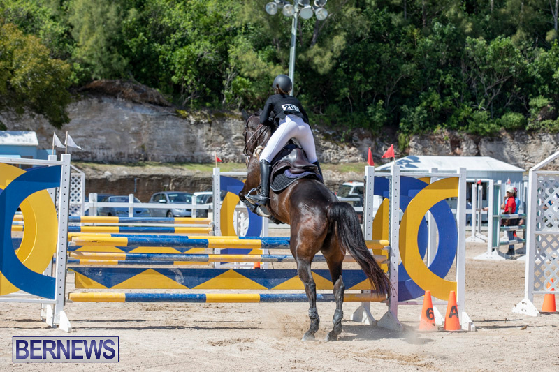 FEI-Jumping-World-Challenge-Competition-3-Bermuda-March-9-2019-0235