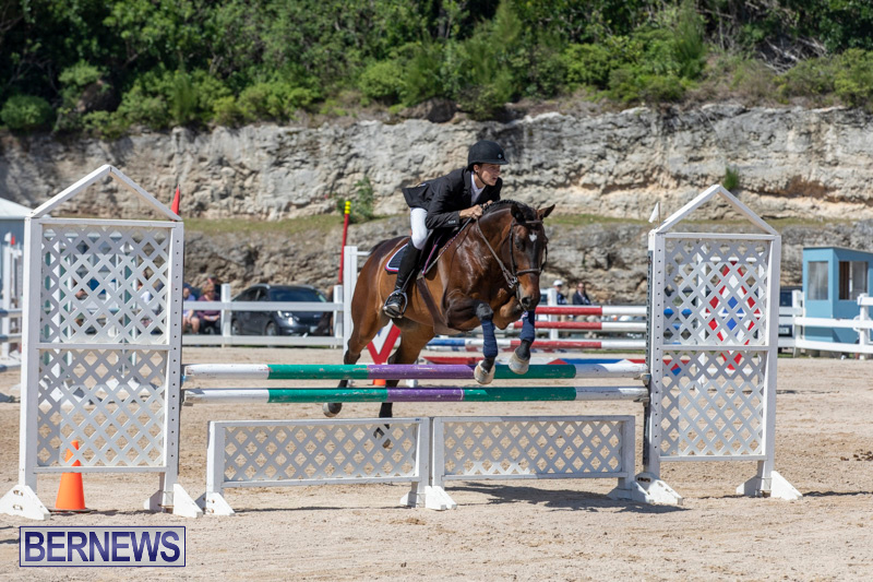 FEI-Jumping-World-Challenge-Competition-3-Bermuda-March-9-2019-0249