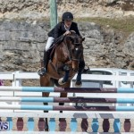 FEI Jumping World Challenge Competition 3 Bermuda, March 9 2019-0258
