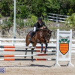 FEI Jumping World Challenge Competition 3 Bermuda, March 9 2019-0277