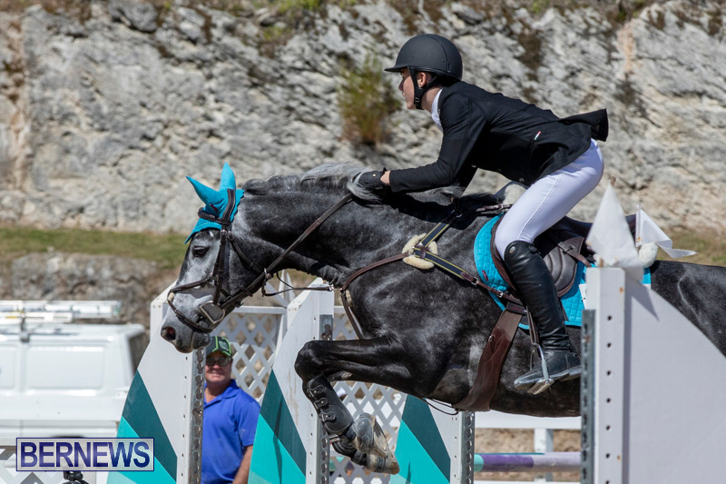 FEI-Jumping-World-Challenge-Competition-3-Bermuda-March-9-2019-0308