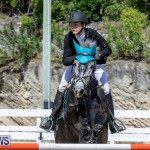 FEI Jumping World Challenge Competition 3 Bermuda, March 9 2019-0325