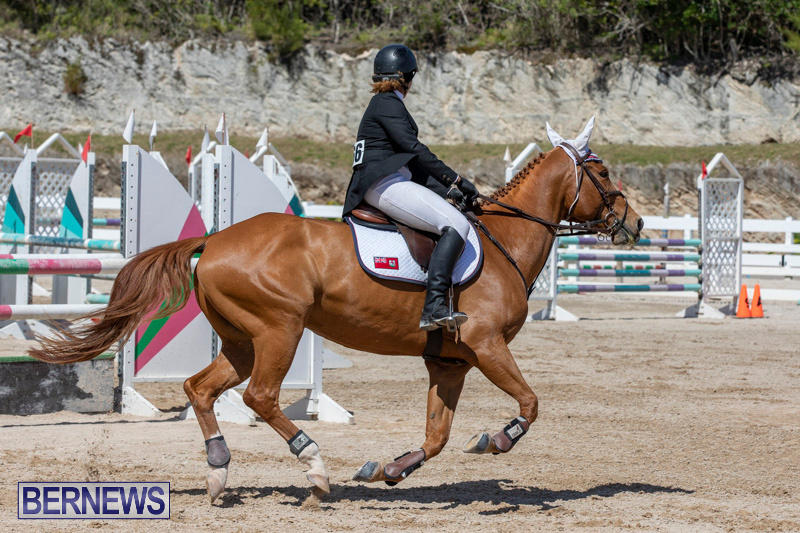 FEI-Jumping-World-Challenge-Competition-3-Bermuda-March-9-2019-0353