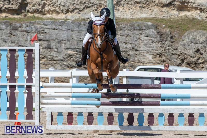 FEI-Jumping-World-Challenge-Competition-3-Bermuda-March-9-2019-0362