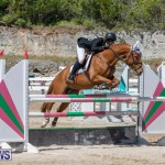 FEI Jumping World Challenge Competition 3 Bermuda, March 9 2019-0368