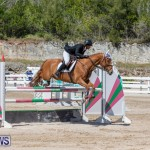 FEI Jumping World Challenge Competition 3 Bermuda, March 9 2019-0369