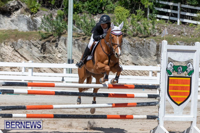FEI-Jumping-World-Challenge-Competition-3-Bermuda-March-9-2019-0379
