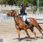 FEI Jumping World Challenge Competition 3 Bermuda, March 9 2019-0385