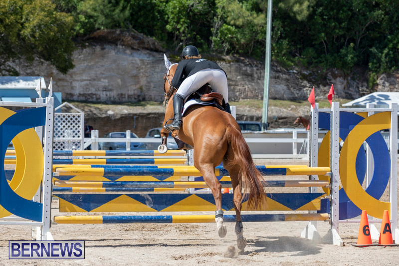 FEI-Jumping-World-Challenge-Competition-3-Bermuda-March-9-2019-0389