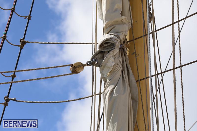 Pelican of London Bermuda March 15 2019 (17)