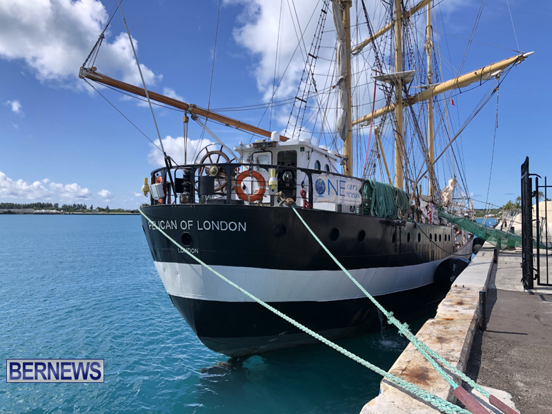Pelican of London Bermuda March 15 2019 (18)