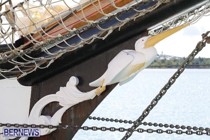 Pelican of London Bermuda March 15 2019 (3)