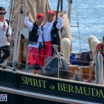 Pirates of Bermuda Fundraising Event, March 16 2019-0637