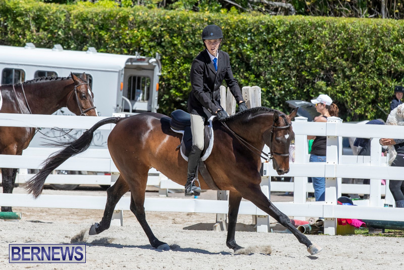 RES Hunter Jumper Show Bermuda, March 16 2019-0561