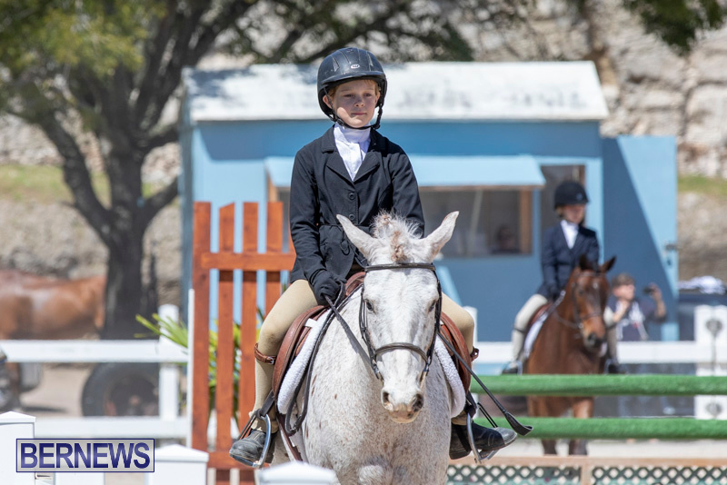 RES Hunter Jumper Show Bermuda, March 16 2019-0580