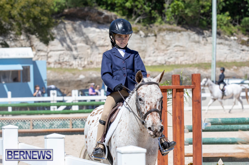 RES Hunter Jumper Show Bermuda, March 16 2019-0584