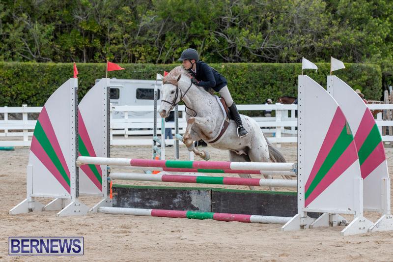 RES-Hunter-Jumper-Show-Bermuda-March-17-2019-1447