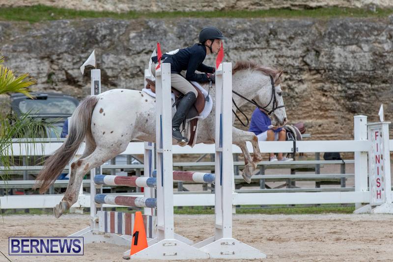 RES-Hunter-Jumper-Show-Bermuda-March-17-2019-1454