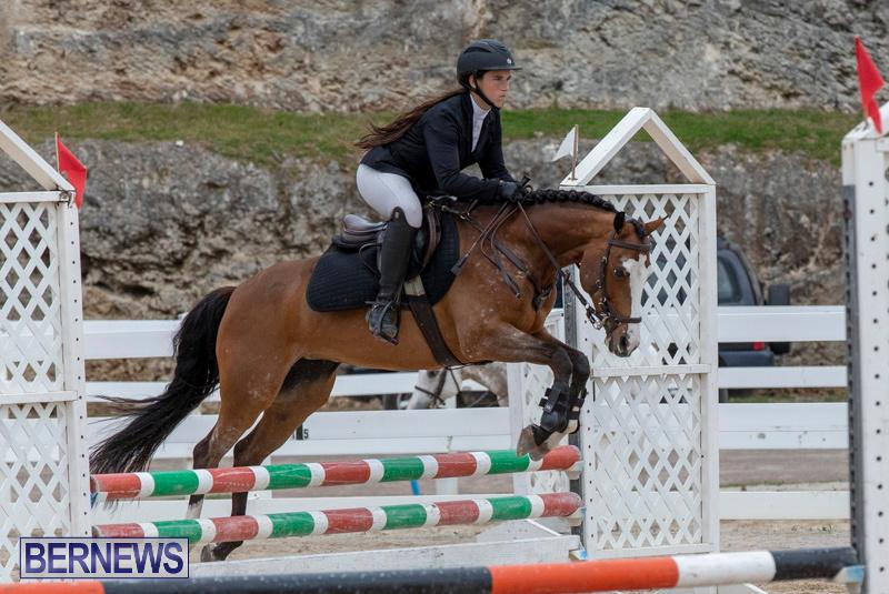RES-Hunter-Jumper-Show-Bermuda-March-17-2019-1464