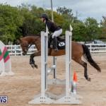 RES Hunter Jumper Show Bermuda, March 17 2019-1483